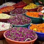 onam-market